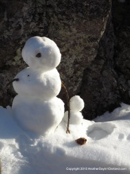 One-Eyed Snow Guy & Friend