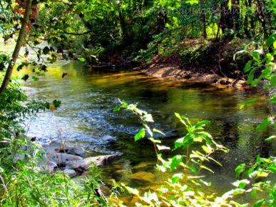 Cedar River